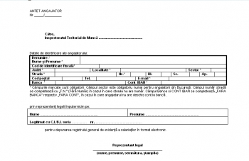 Adresa pentru depunere revisal in format electronic